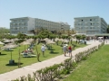 hotel-apollo-beach-rodos (1)