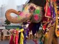 indija daleka putovanja (6)