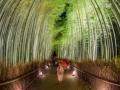 japan daleka putovanja (5)
