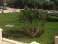 Vila Paradise - Nea Skioni (4)